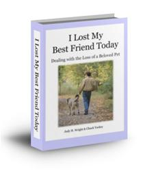 I Lost My Best Friend Today book