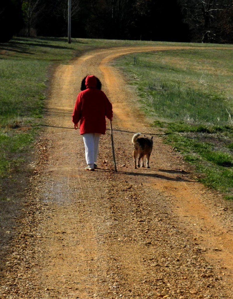 Saying goodbye pet grief coaching package