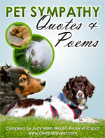Pet Sympathy Quotes and Poems